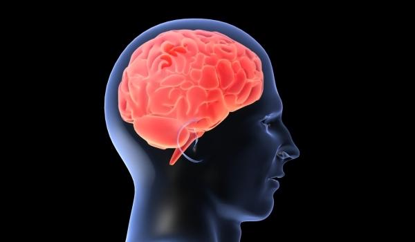 Cunoaște-ți creierul pentru a pierde în greutate