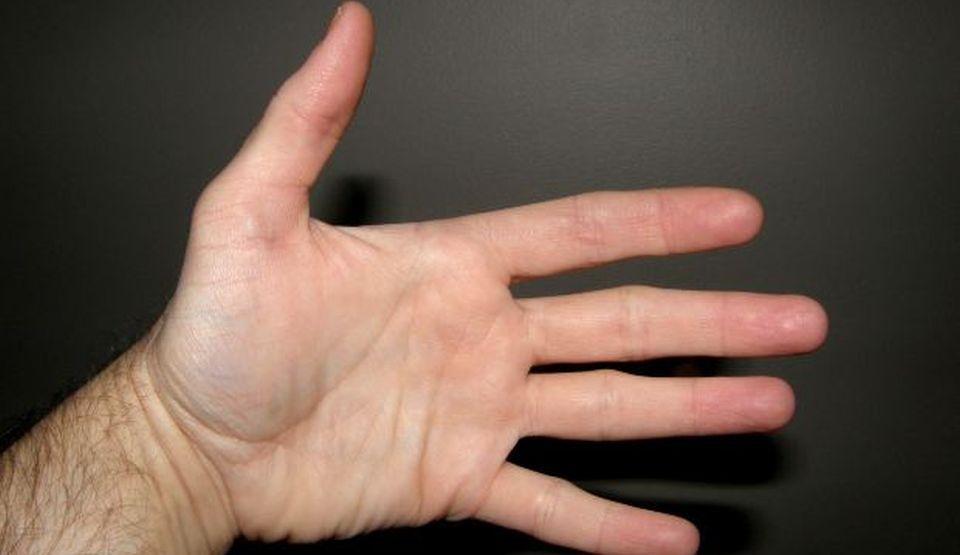 dimensiunea palmei și a penisului)