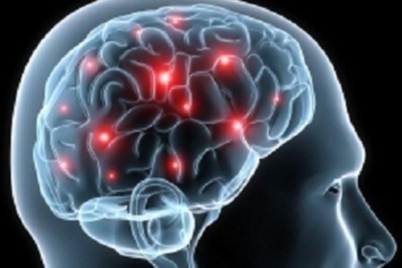 descoperi paraziții creierului revistei