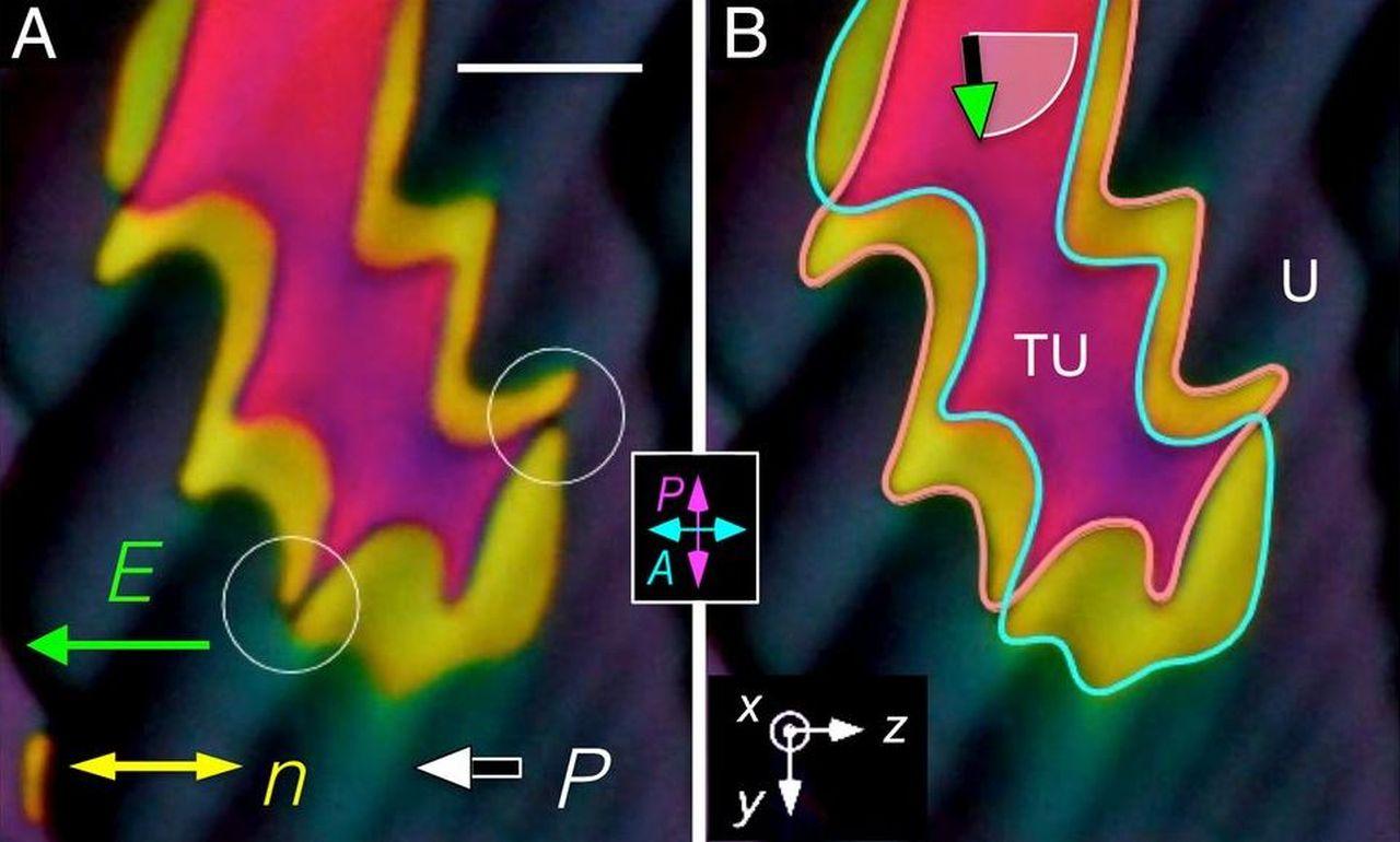 O nouă fază lichidă a fost descoperită după 100 de ani de cercetări