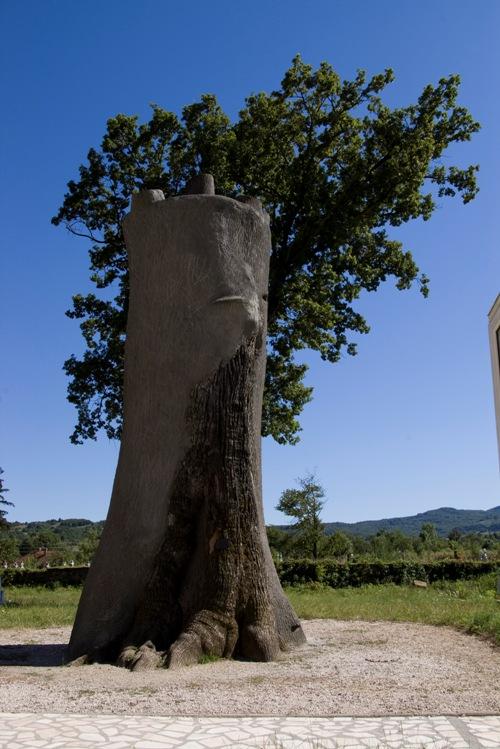 Avram Iancu – Povestea Vulturului Ranit