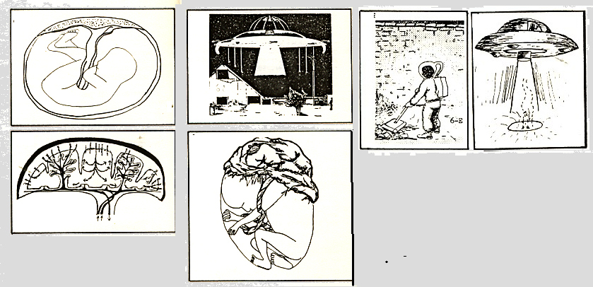 Rapiti de extraterestri: multe povesti si o teorie