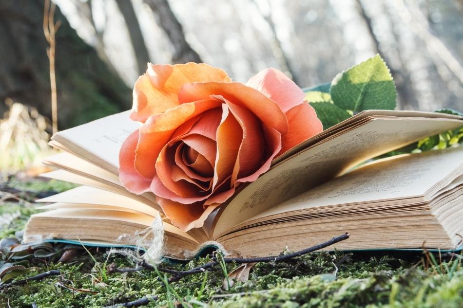 Un alt studiu, efectuat la Universitatea Harvard, a arătat că studenţii expuşi la parfum de trandafir în timp ce dormeau după ce au învăţat îşi aminteau mai bine informaţiile învăţate