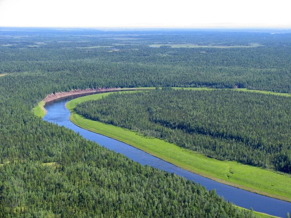 Meandrele unui fluviu in siberia