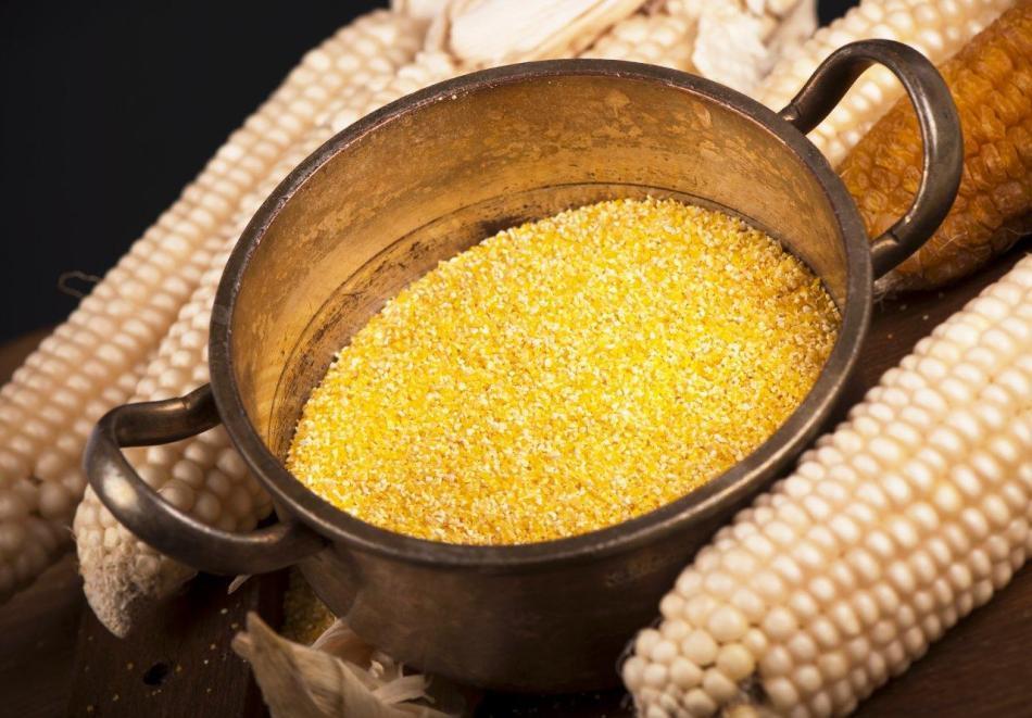 Porumbul, introdus la noi în secolul al XVII-lea, a devenit rapid o resursă alimentară de bază.