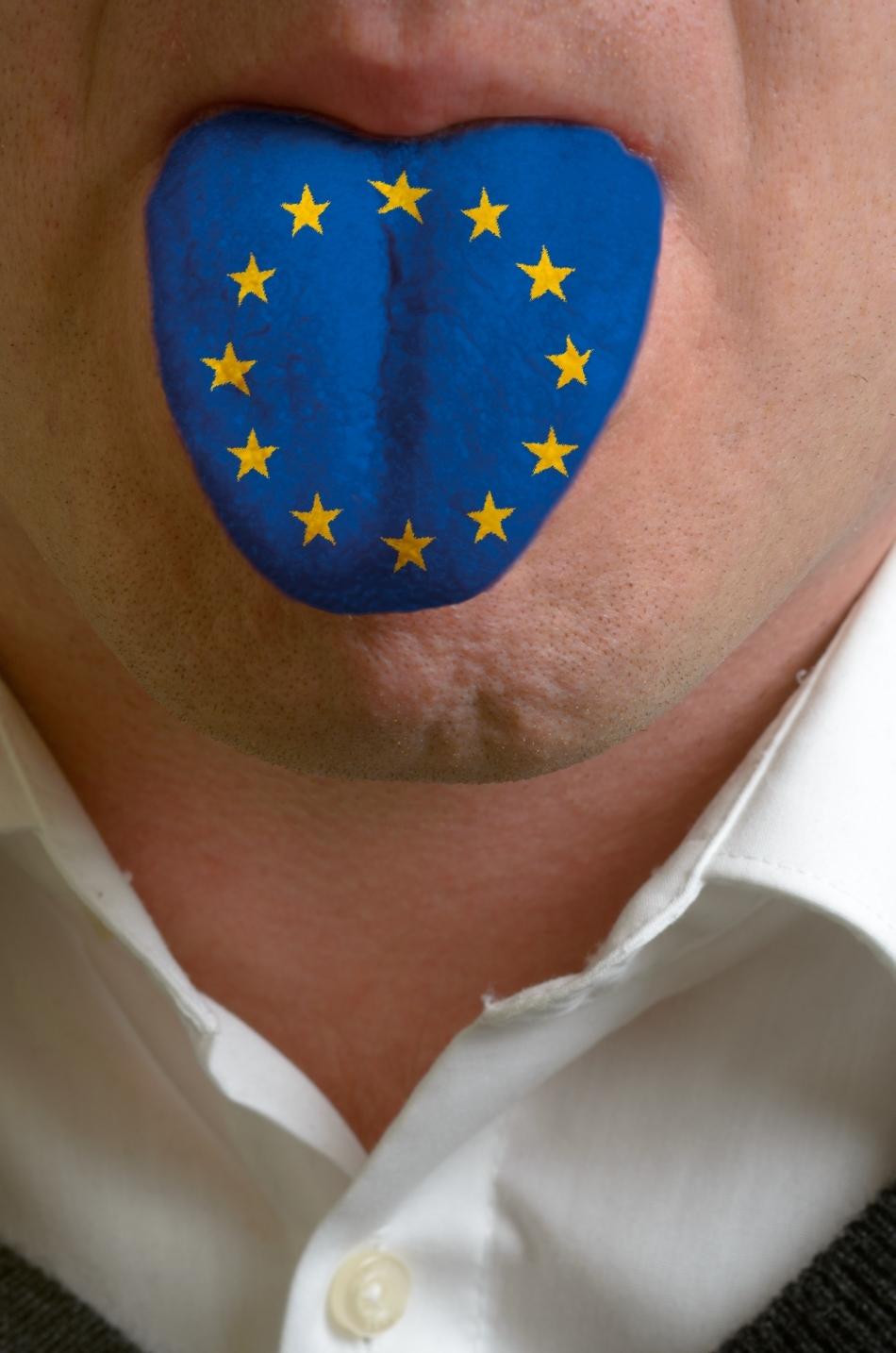 Limbile comnităţii europene
