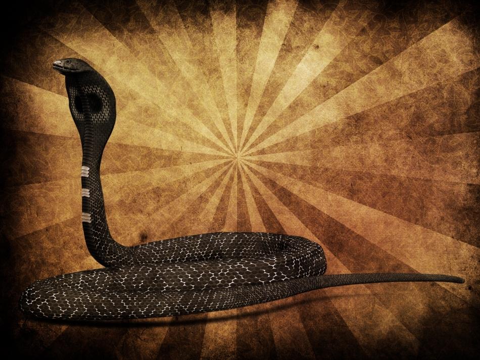 Zeităţile Nagas luau cel mai adesea înfăţişarea unor cobre