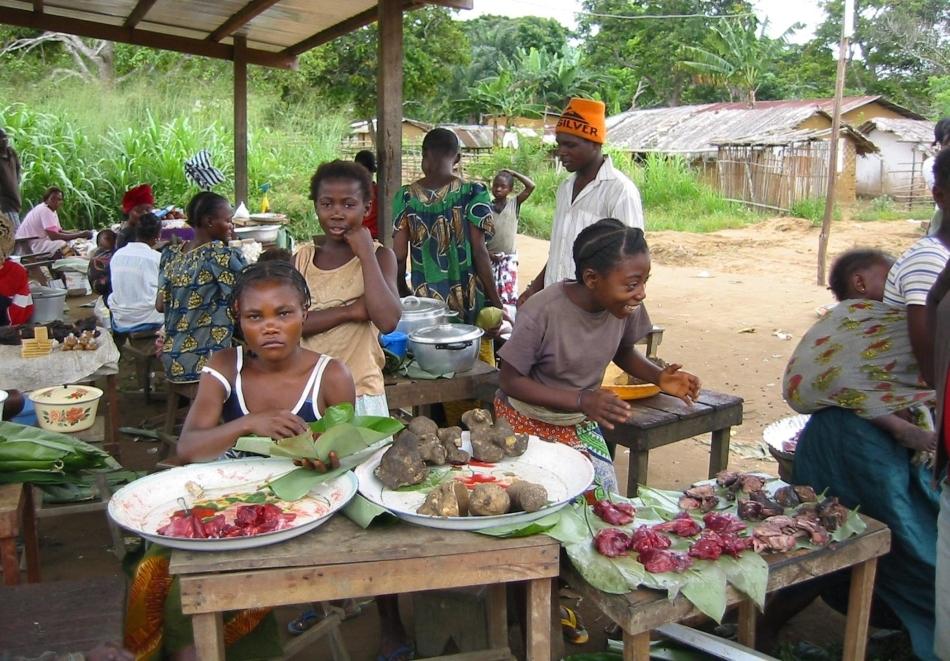 """Piaţă de """"bushmeat"""" (carnea provenita de la animalele sălbatice din jungla africana)"""
