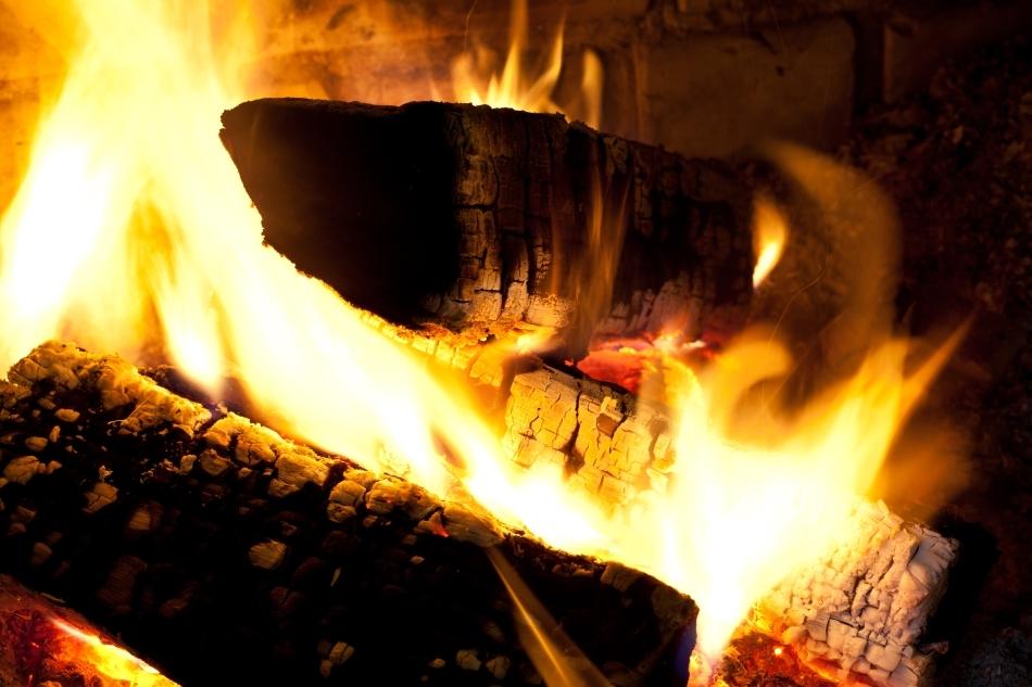 Buşteni arzând în sobă