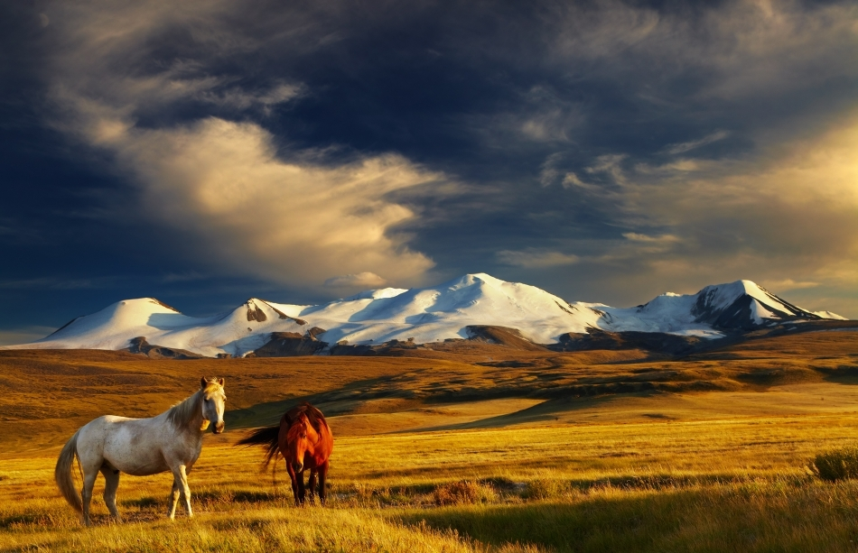 Necuprinsul stepelor mongole la graniţa cu China