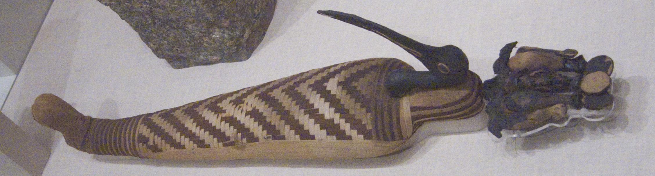 Milioane de mumii de animale au fost decsoperite în Egipt, multe dintre ele fiind mumii de ibis
