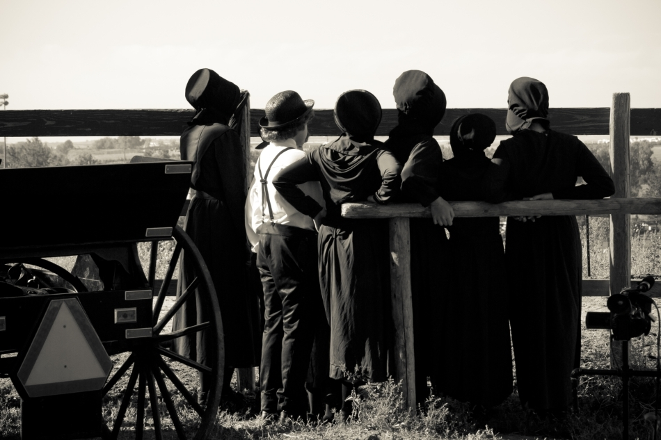 Tineri Amish