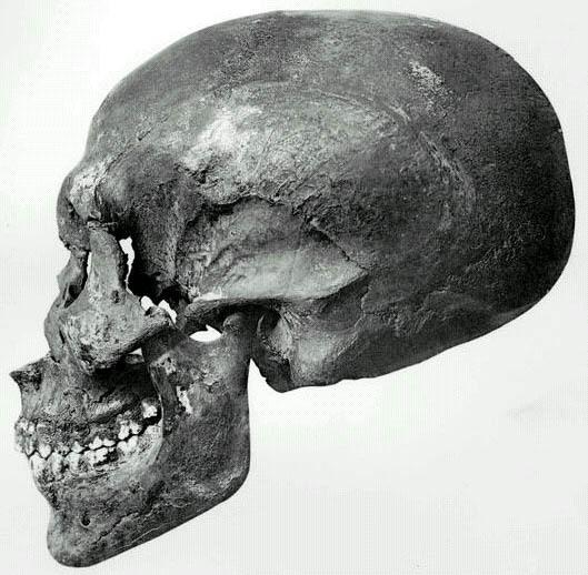 Craniul faraonului Akhanton, mutilat