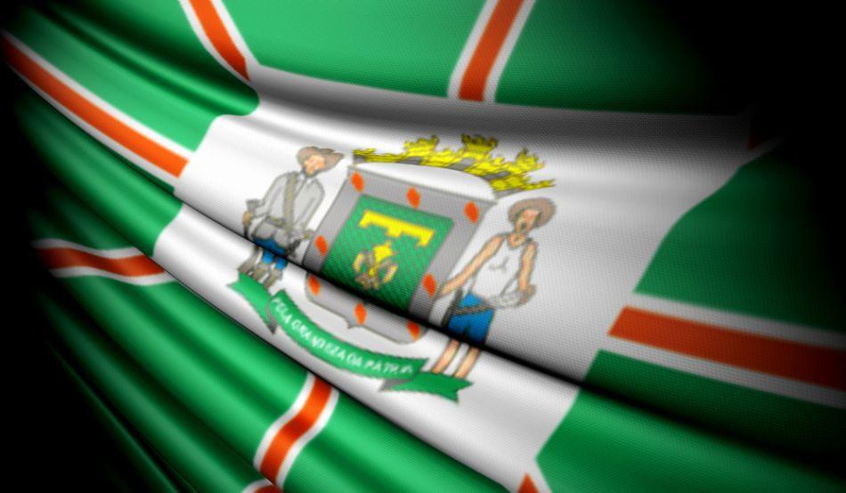 Steagul statului brazilian Goias, unde se află oraşul Goiania.