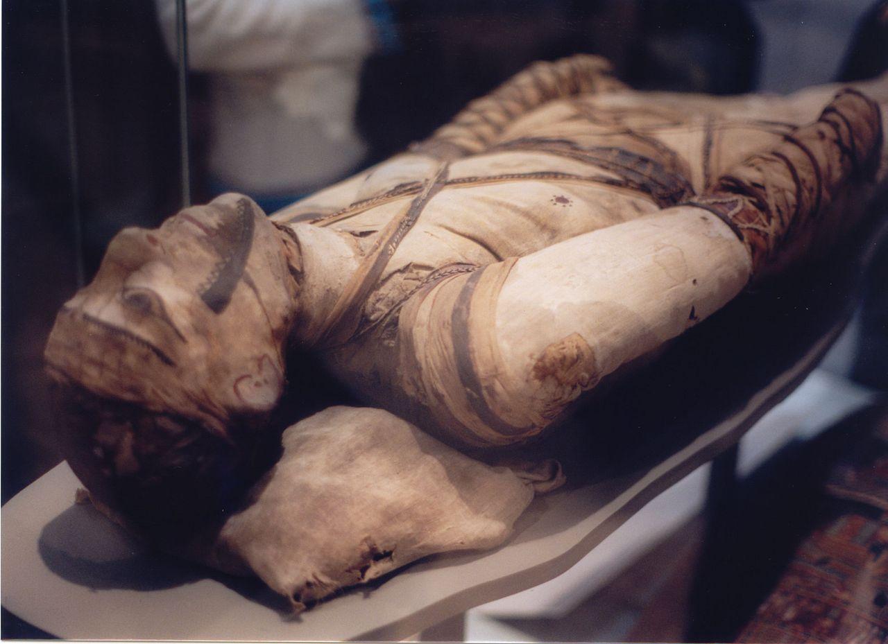 Mumie la British Museum