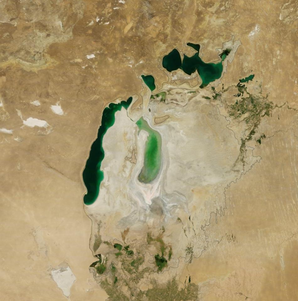 tarmurile micsorare ale Aralului