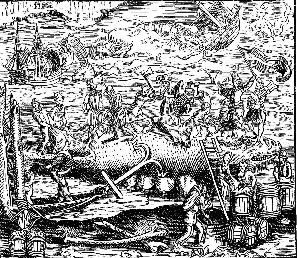 Desen de epocă cu procesarea unei carcase de balenă