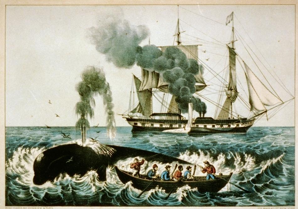 Reproducerea unei vânători de balene din anul 1860