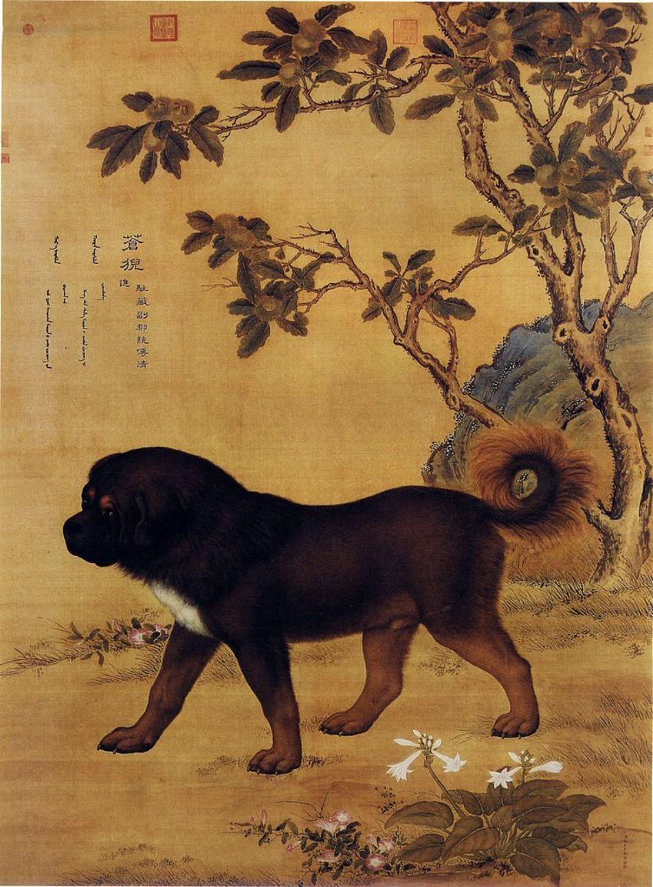 Stampă veche chineză care prezintă un dog tibetan