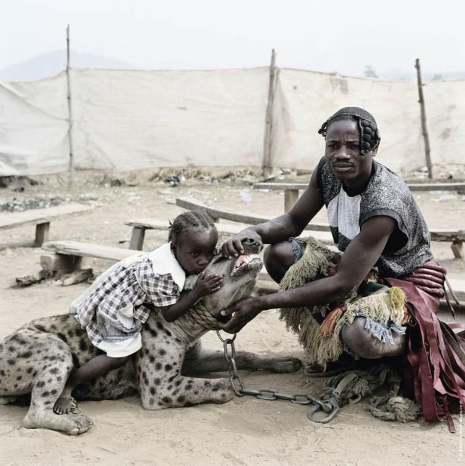 Copii sunt introduşi de mici hienelor pentru a nu se teme mai apoi de aceste carnivore redutabile