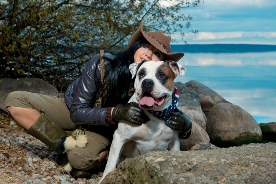 Bulldogul american este foarte ataşat de stăpânii săi