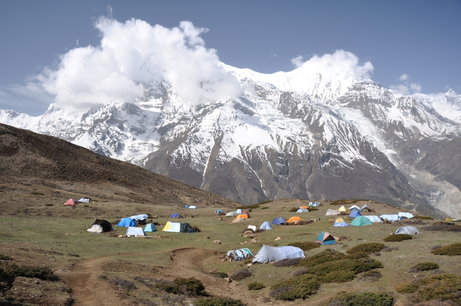 Tabără a culegătorilor de Yarsagumba din Nepal.