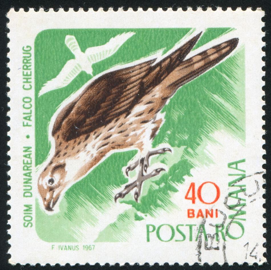 Primul timbru emis cu şoim dunărean emis de Poşta Română.
