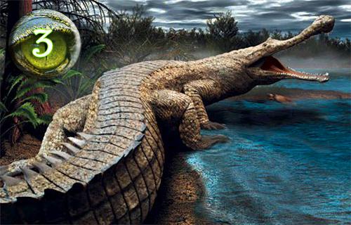 opțiuni binare de crocodil