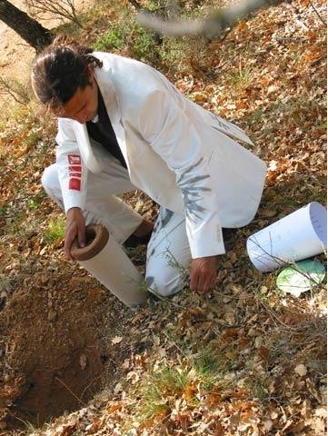 Cum poţi deveni un copac după moarte? Un designer a creat o metodă inovatoare!
