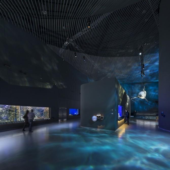 The Blue Planet: cel mai mare acvariu din Europa de Nord