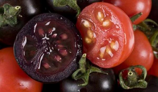 Prospeţime îndelungată şi gust mai bun: ce mai iubită legume este pe cale de a deveni şi mai atrăgătoare