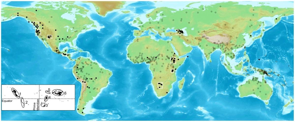 Cum influenţează zona geografică limbajul: de ce limbile vorbite în zone montane sunt diferite de cele de la câmpie?
