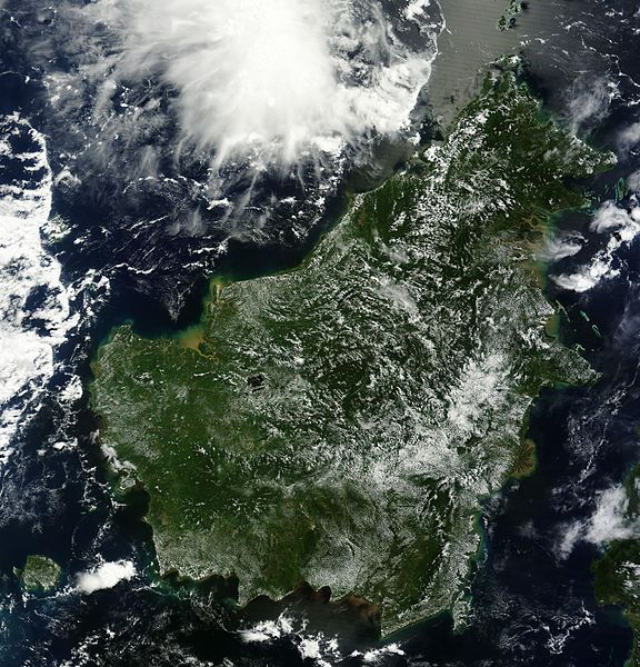 Insula Borneo