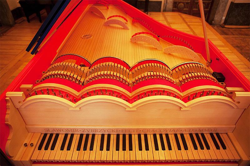 Viola Organista creată de Slawomir Zubrzycki