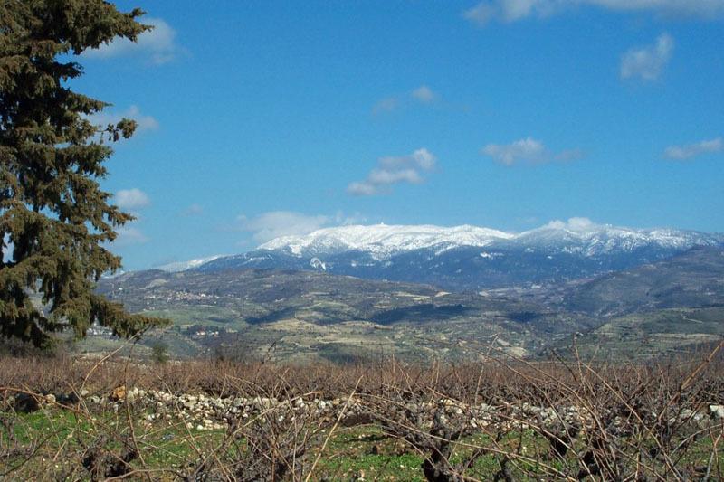 Cipru - Muntele Olimp - 1952 metri