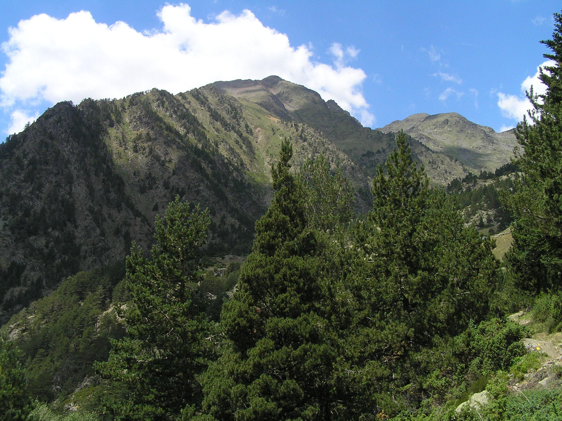 Andorra - Coma Pedrosa  - 2942 metri