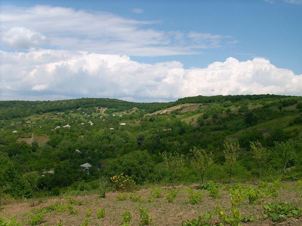 Moldova - Bălăneşti - 430 metri