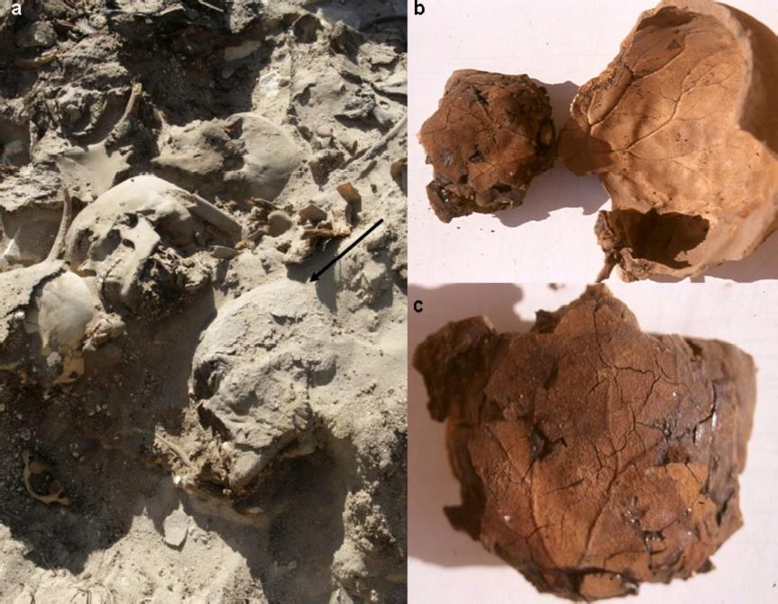 Locul unde au fost găsite mumiile şi interiorul craniului unde s-a conservat amprenta vasculară