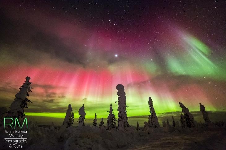 Aurora boreală văzută din Alaska. FOTO: Marketa Murray