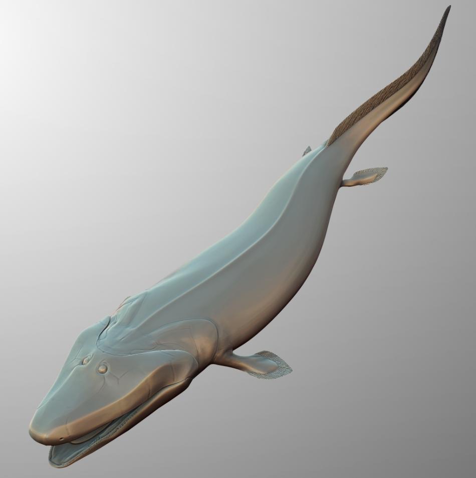 Reconstituirea lui Tiktaalik, peştele tetrapodomorf ale cărui înotătoare laterale au câte un peduncul musculos, amintind de un picior.