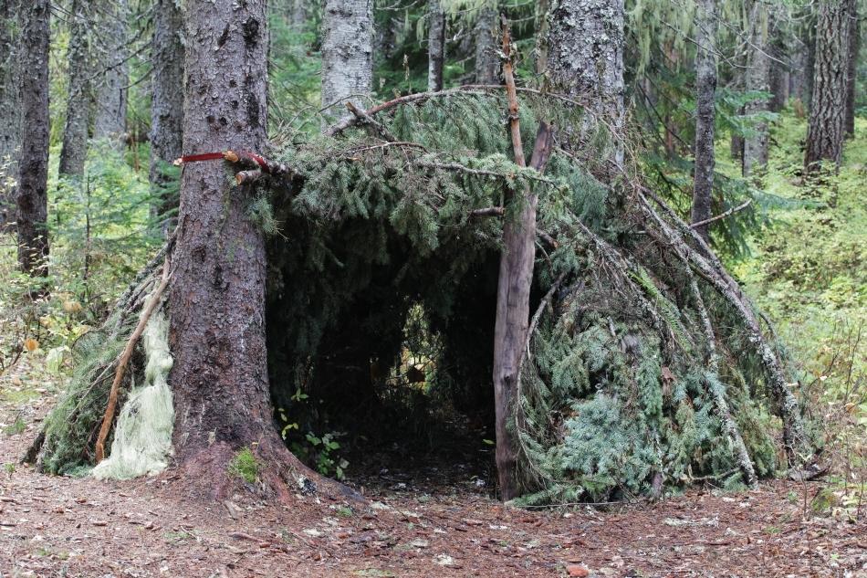 Adăpost de noapte improvizat în pădure