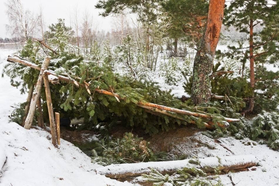 Adăpost temporar de iarnă