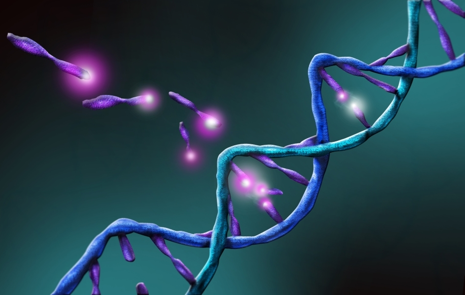 Mecanismul prin care sunt transmise de-a lungul mai multor generaţii schimbările epigenetice nu este cunoscut încă; oamenii de ştiinţă explorează diferite ipoteze.