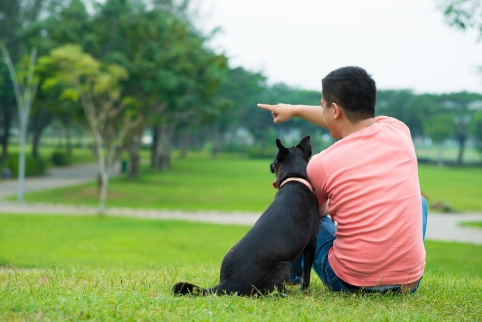 """Câinii înţeleg acest gest - arătarea cu degetul a unui obiect - ceea ce demonstrează că au o aşa-numită """"teorie a minţii."""""""