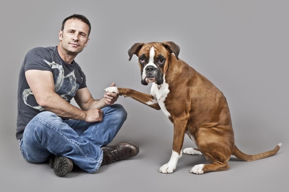 Multe milenii de convieţuire i-au apropiat pe câini de oameni: cele două specii pot comunica între ele într-o anumită măsură.