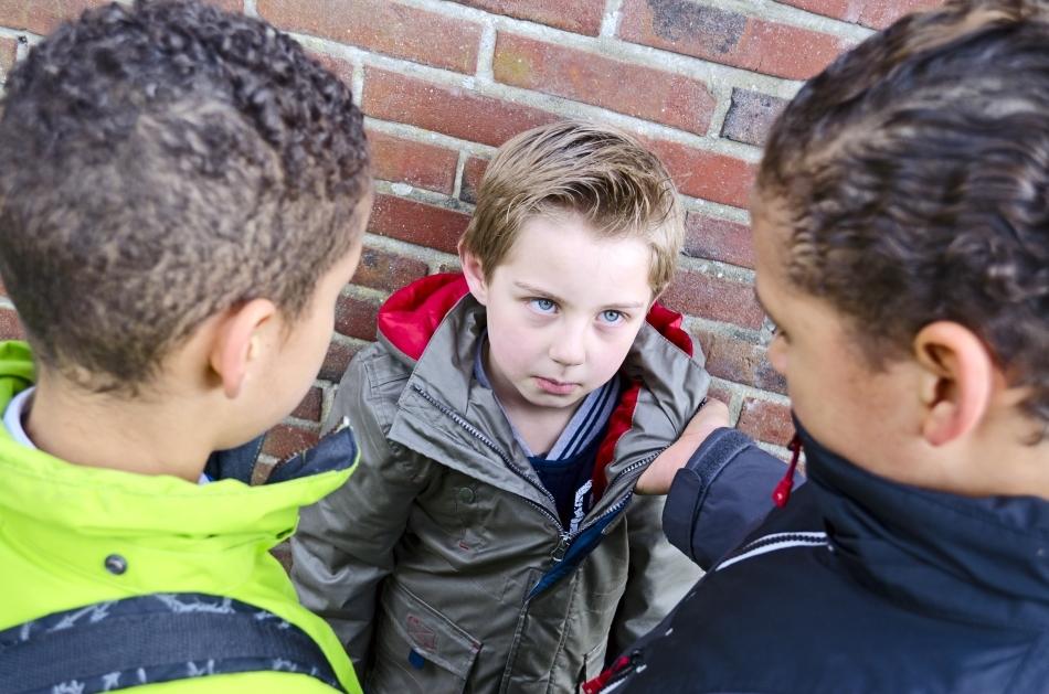 Masculii cu un statut ridicat dau ordine celorlalţi membri ai grupului, iar acestea nu sunt limitate doar la enunţuri verbale; uneori, băieţii chiar recurg la împins şi la alte gesturi fizice pentru a-i face pe cei cu un statut jos să îi asculte.
