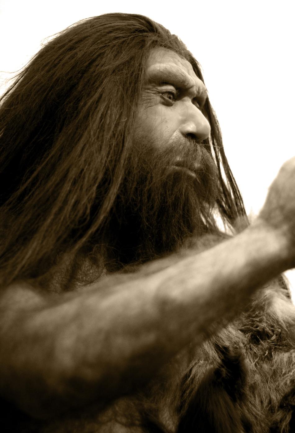În ADN-ul denisovanilor există urme genetice ale unei specii de hominid mult mai vechi, cu care omul din Denisova s-a încrucişat cândva.