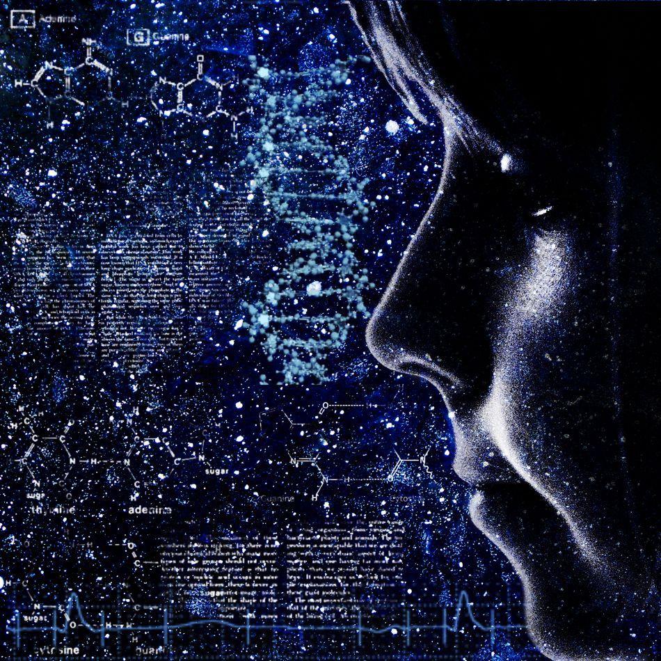 Cunoaşterea este una dintre trăsăturile caracteristice ale speciei umane.