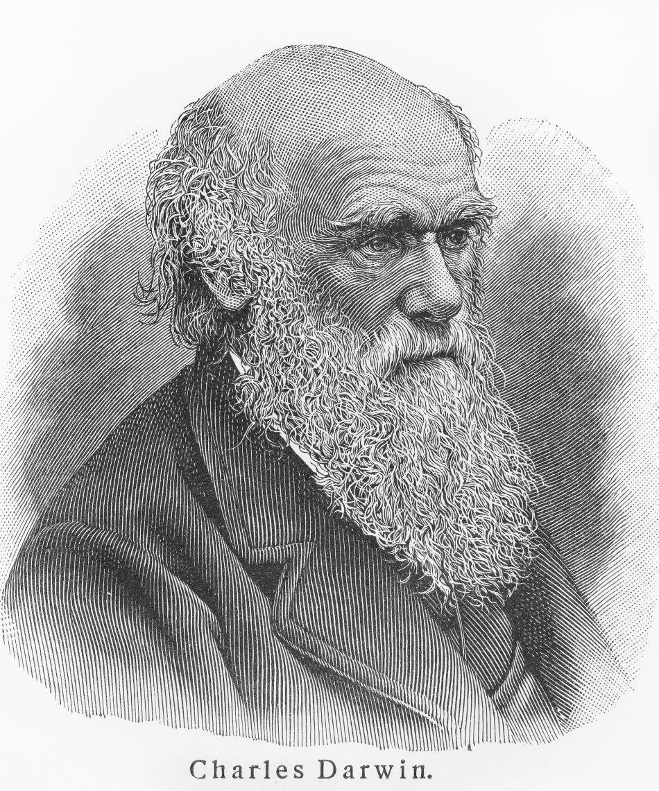 Portret de epocă al naturalistului Charles Darwin.