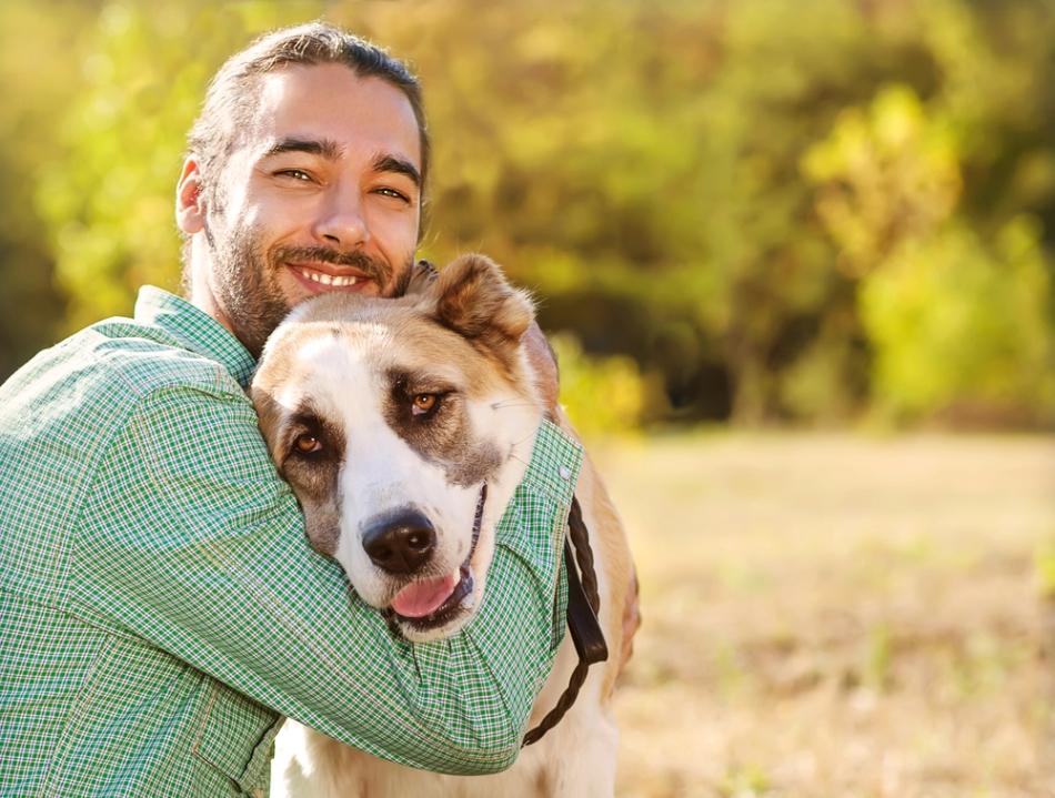 Cele mai bune 17 site-uri de dating pentru iubitorii de animale () | mshost.ro